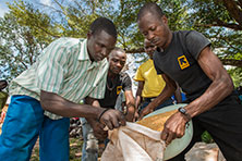 IRC staff distribute rice to a displaced man in Kaga Bandoro, Central African Republic